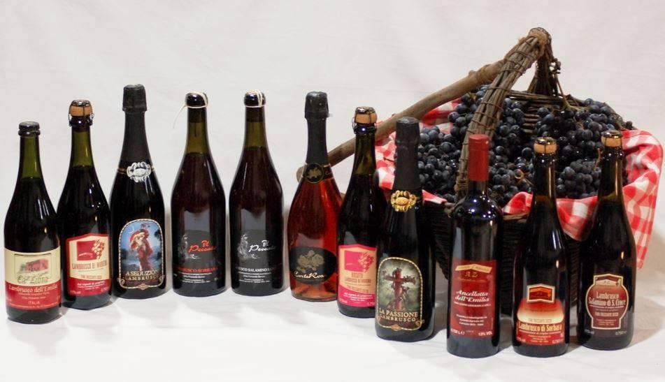 Ламбруско (lambrusco): бюджетное игристое вино из италии