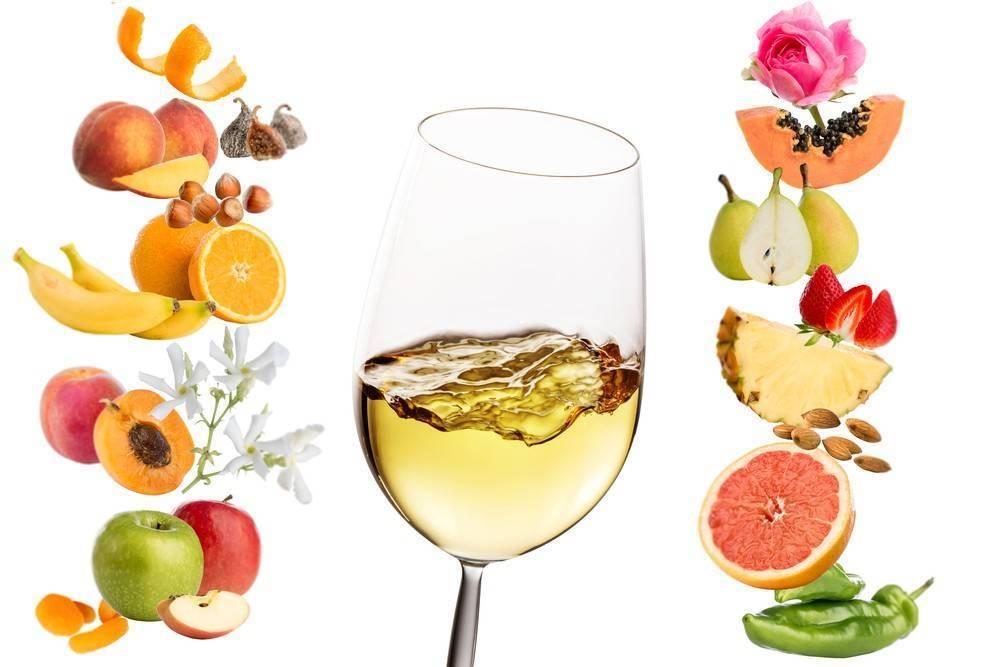 Фруктовое вино — рецепты, особенности, технология производства и вкусовые характеристики (120 фото и видео)