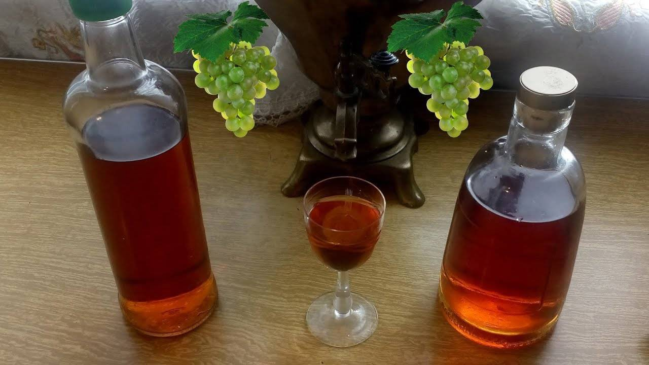 Домашнее виноделие – сорта винограда, оборудование, рецепты, этапы производства | в саду (огород.ru)