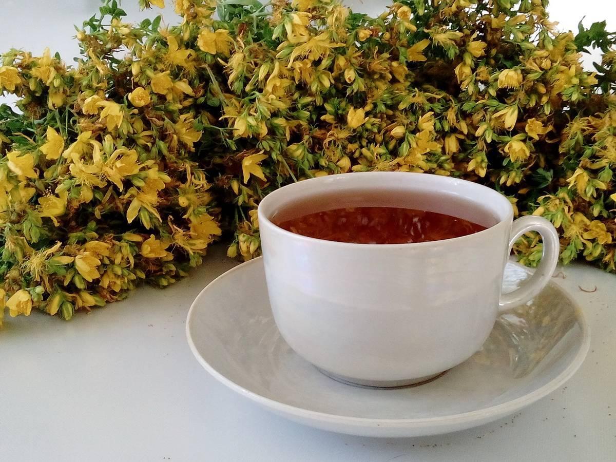 Рецепты настойки зверобоя на водке, спирте и самогоне; применение и лечение в домашних условиях