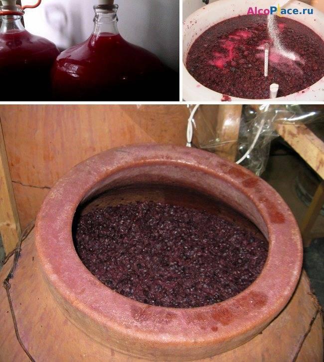 Брожение вина: сколько должно бродить домашнее вино, температура и этапы
