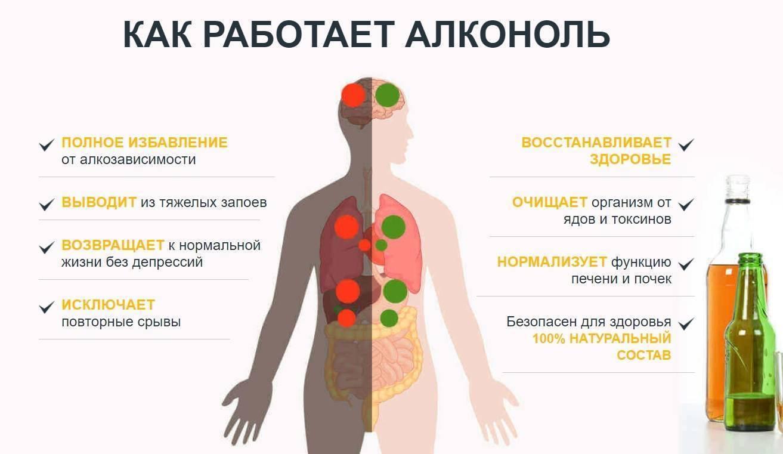 Восстановление организма после запоя