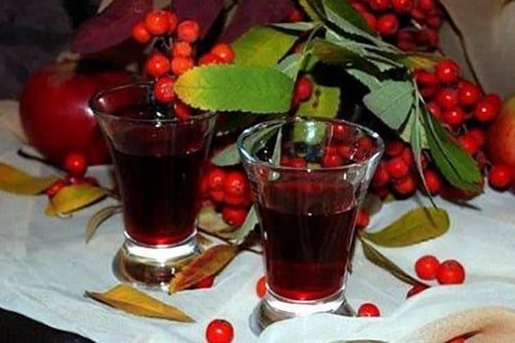 Вино из рябины в домашних условиях классический рецепт