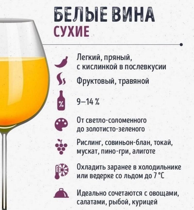 Можно ли пить вино. польза и вред красного вина. сколько можно пить вина. вредно ли пить вино.