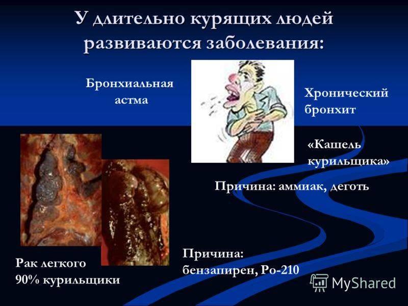 Курение и бронхи: могут ли болеть? болезни, очищение, фото