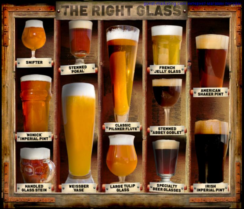 Пивной напиток и его отличие от пива: состав, рецептура и как понять по этикетке?