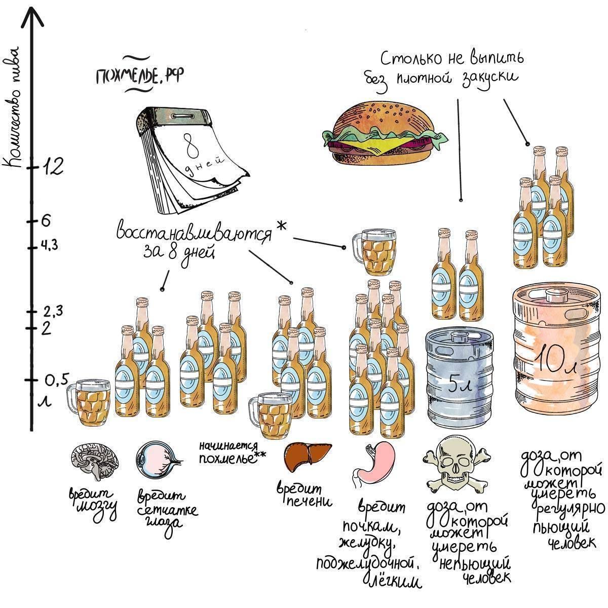 Безопасная доза алкоголя: сколько можно выпить в пересчете на водку