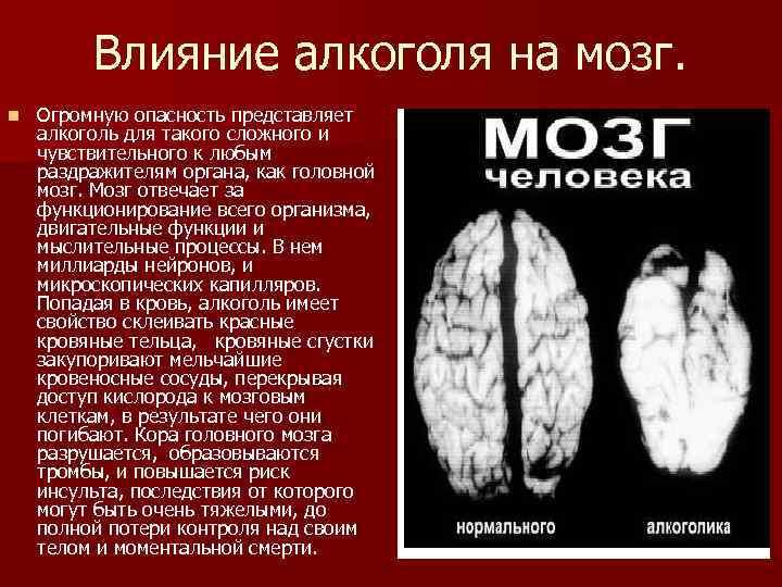Влияние алкоголя на головной мозг: в чем опасность