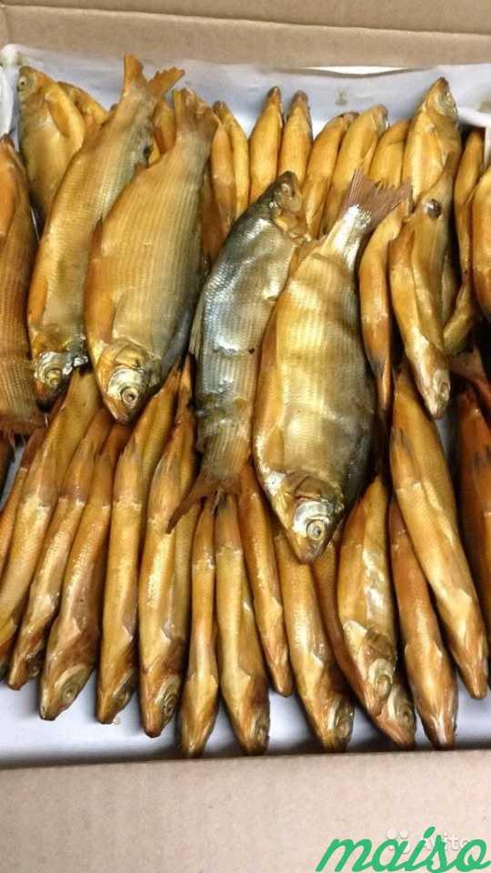 Рыба к пиву: названия сушеной и вяленой рыбки, какая самая вкусная, созданная под пиво