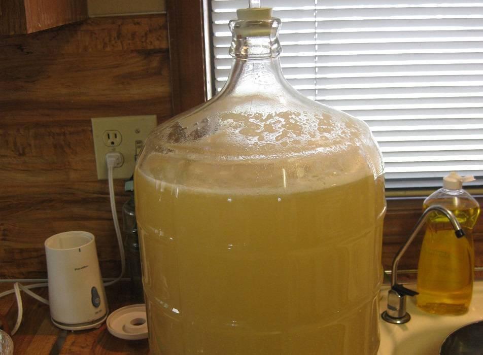 Самогон из мёда в домашних условиях три простых рецепта браги