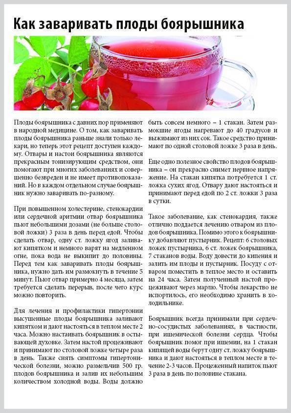 Боярышник — полезные свойства и противопоказания. как заваривать и как пить - полонсил.ру - социальная сеть здоровья - медиаплатформа миртесен