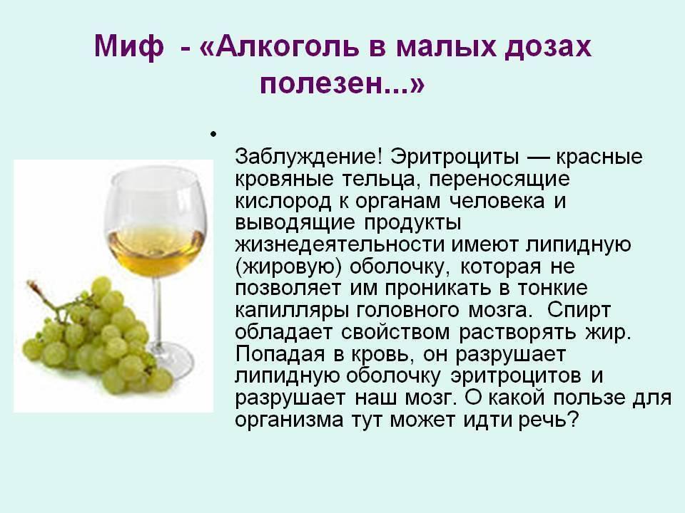 Польза алкоголя в малых дозах для организма человека