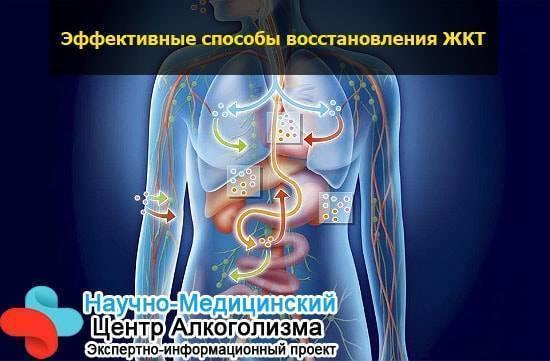 Влияние алкоголя на нервную систему — расстройство нервной системы, методы лечения, советы врачей