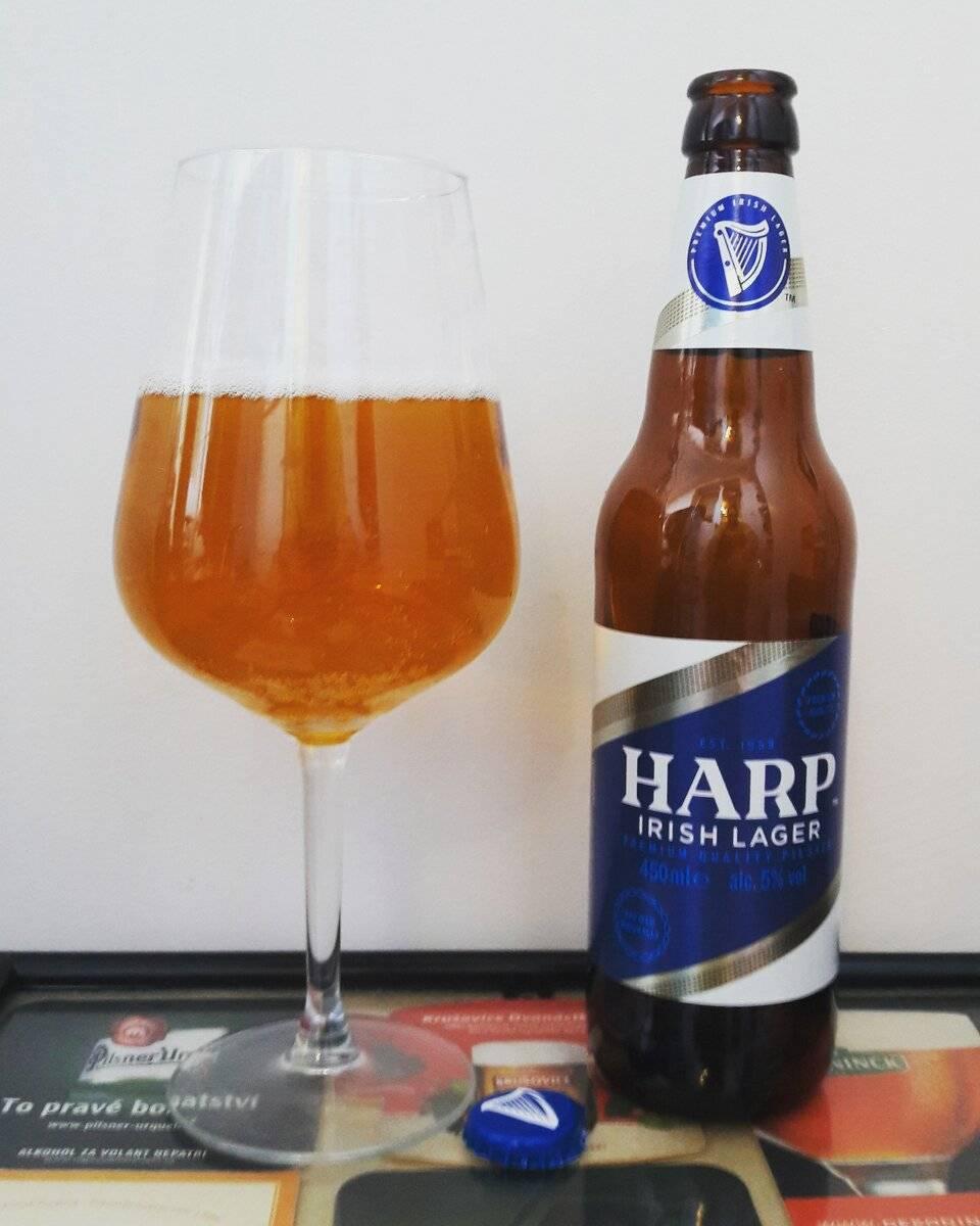 Пиво харп