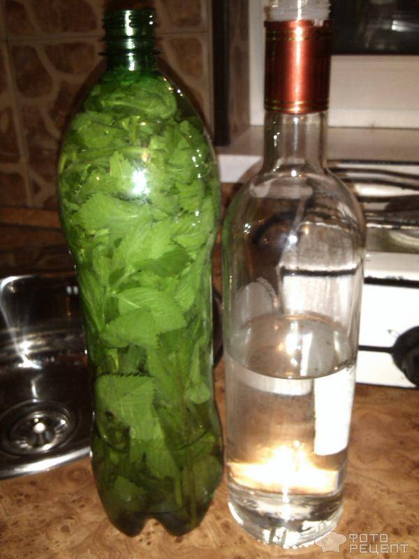 Рецепт приготовления мятной водки