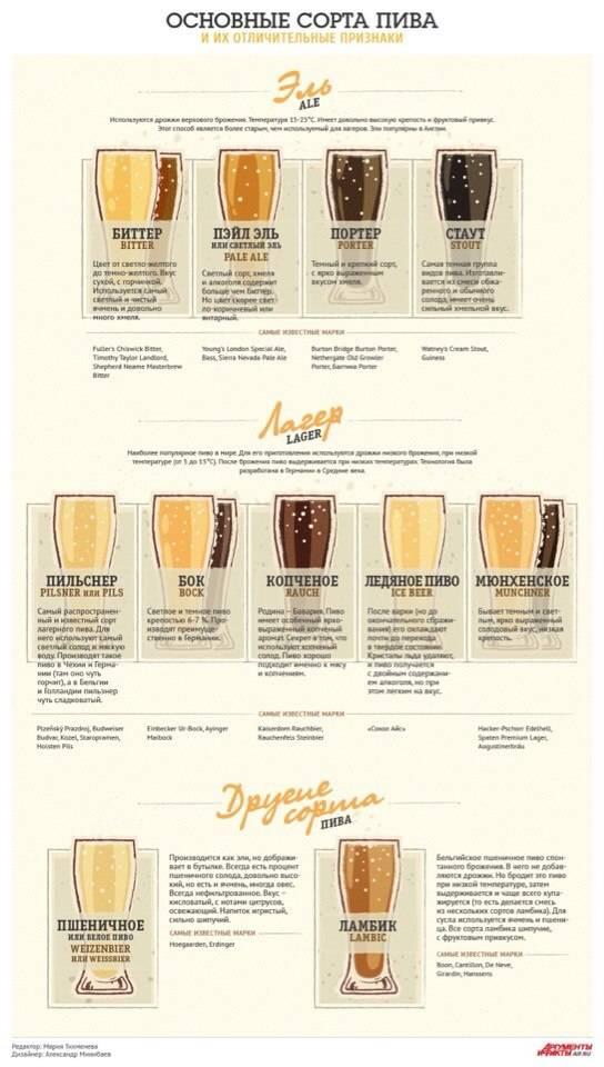Пиво. сорта, способы определить качество, как пить| выпейменя.рф