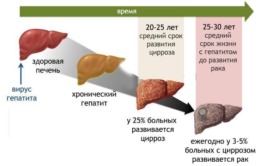 Почему повышается температура при заболевании печени