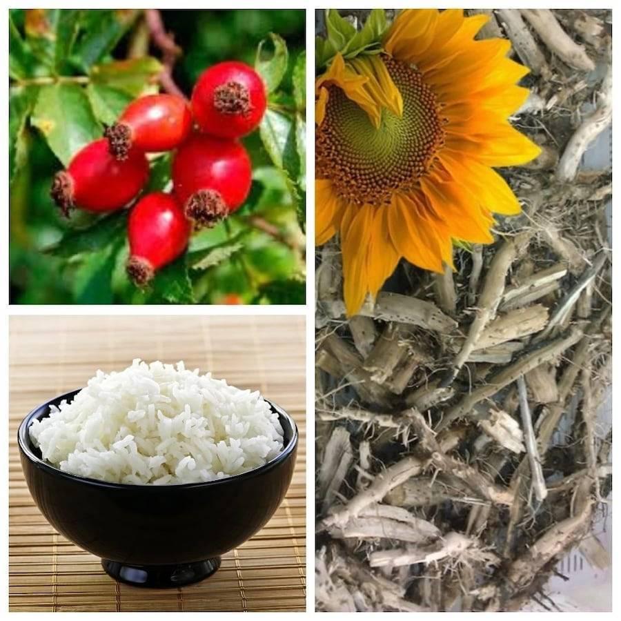 Какие народные средства помогут вывести соль из организма человека - избавляемся от отложений в почках, суставах и сосудах