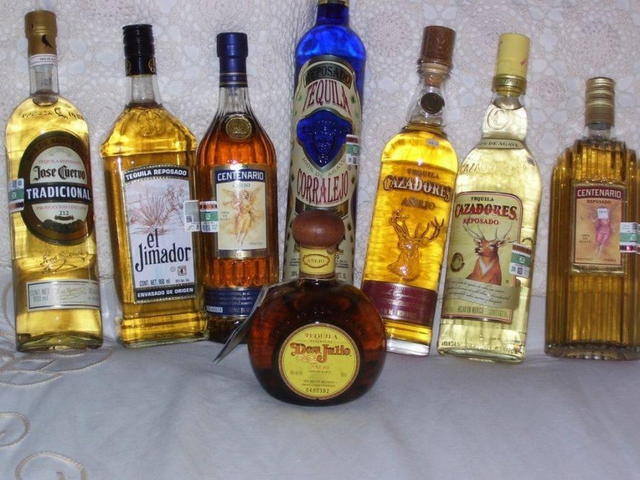 Особенности, история возникновения и разновидности текилы ольмека, как пить алкоголь olmeca