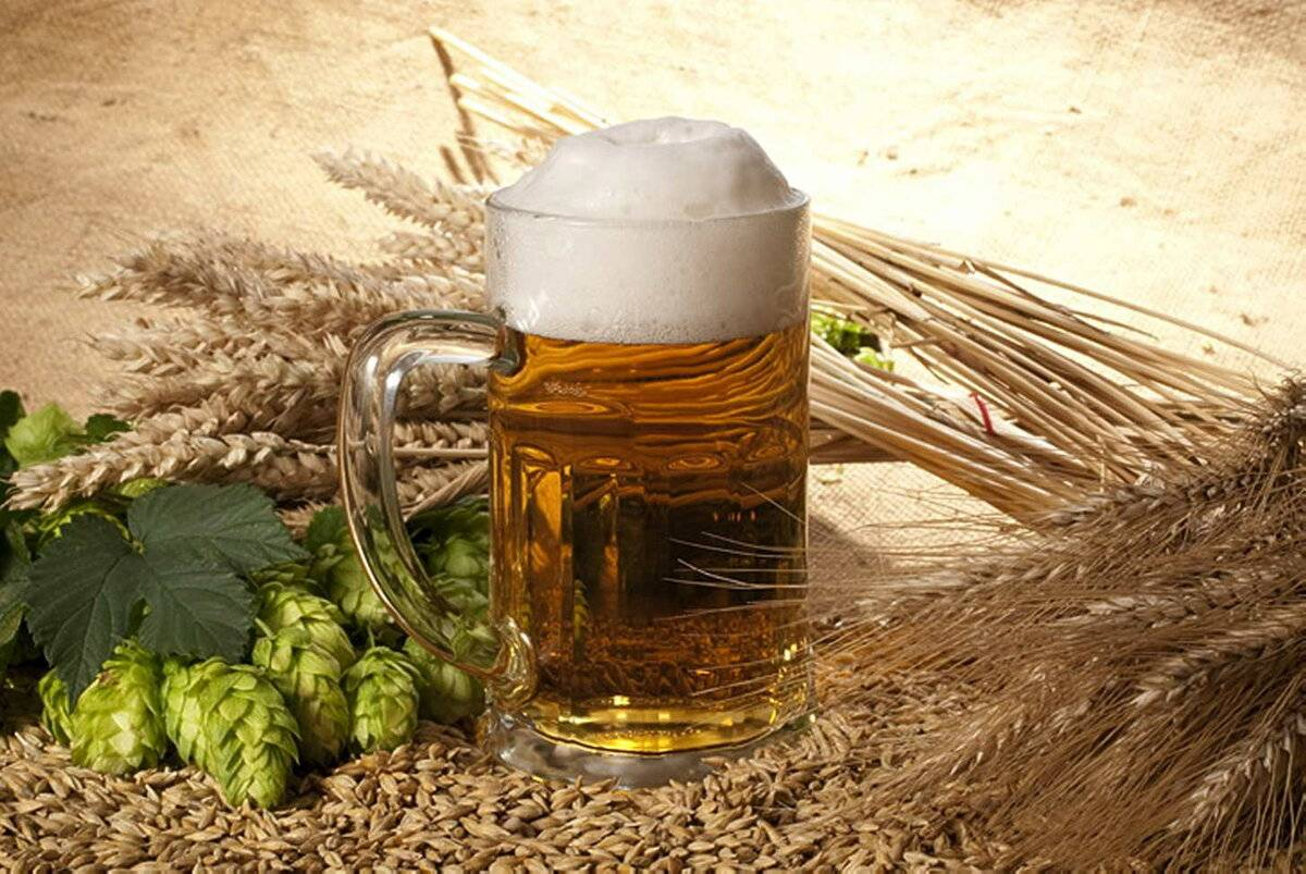 Домашнее пиво из ячменя: простые рецепты для начинающих. как прорастить ячмень? | про самогон и другие напитки ? | яндекс дзен