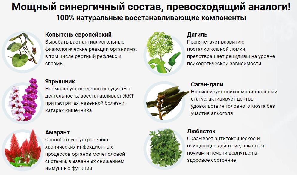 Травы от алкоголизма, копытень, кукольник и травяные сборы от алкоголизма