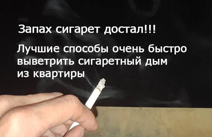 Честно-честно! как врать, чтобы не спалиться. курить и не спалиться: капитан очевидность спешит на помощь