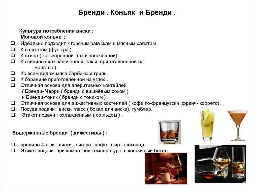 C чем пьют ром, виски, джин, мартини и текилу: лучшие напитки для хорошего настроения