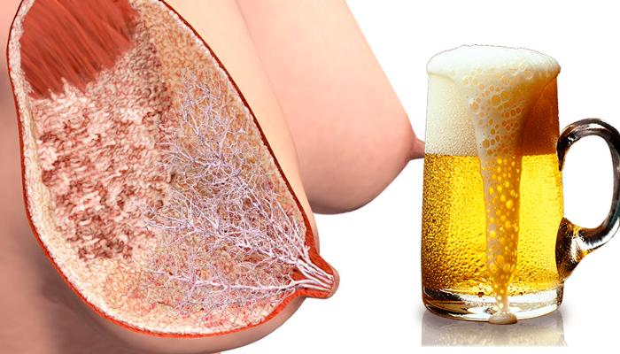 Как пиво влияет на мужской организм: правила безопасного употребления, мифы и факты о воздействии пенного напитка на здоровье