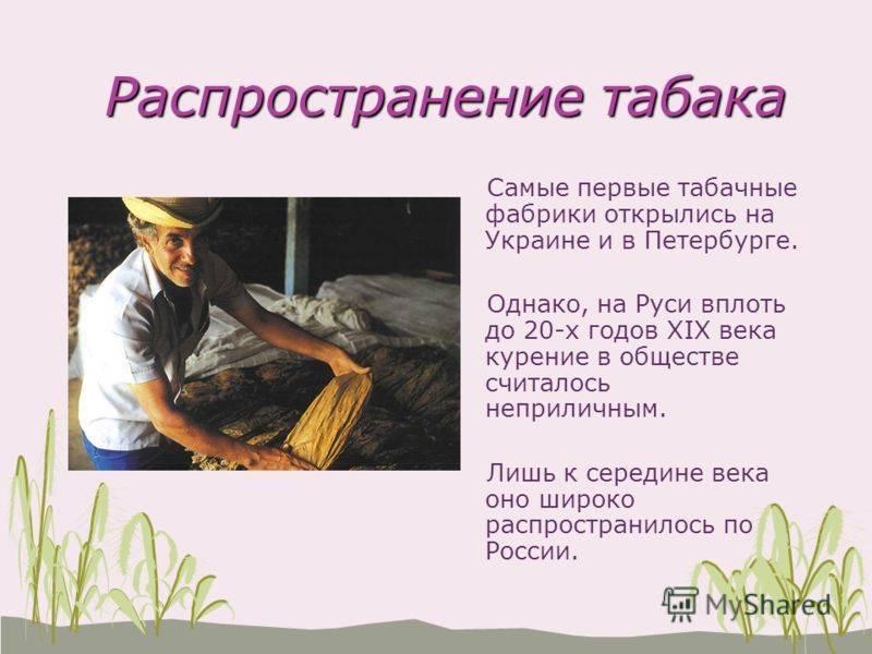Происхождение табака