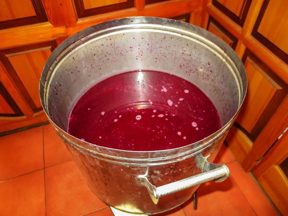 Готовим вино из вишни