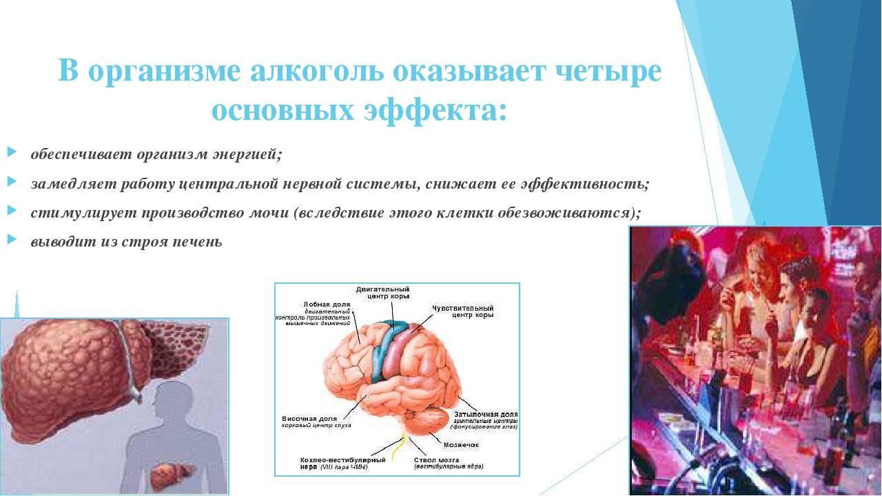 Негативное влияние алкоголя на мозг и нервную систему