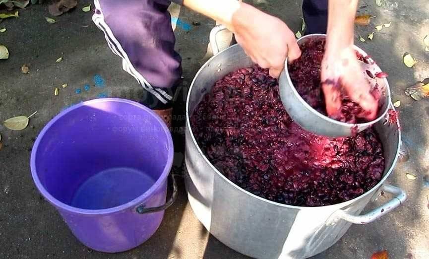 Вино из винограда в домашних условиях: простой рецепт пошаговый с фото, видео