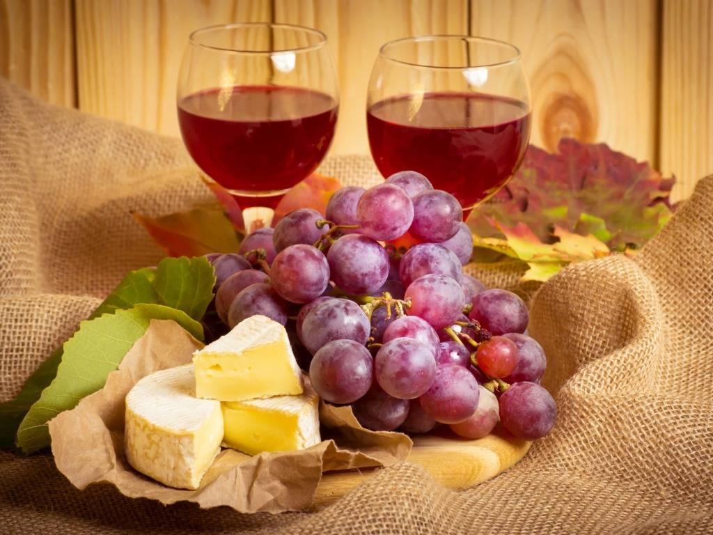 Какое вино выбрать? изучаем бутылку вина: этикетка, сладость, крепость
