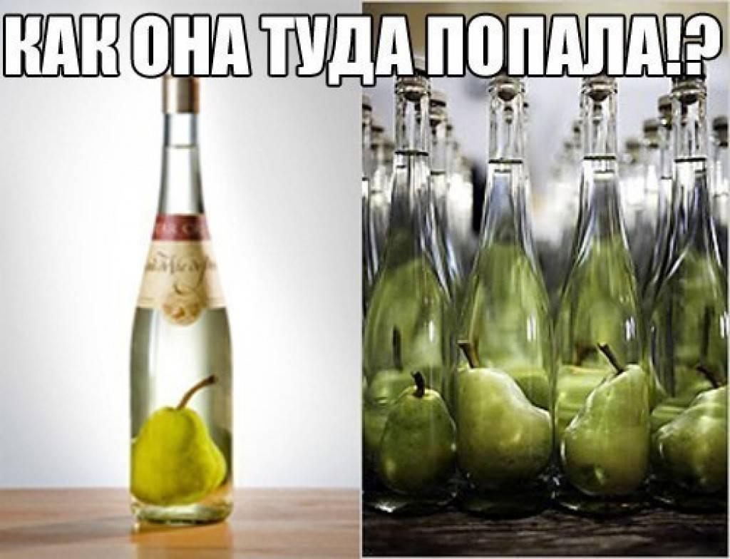 Самогон из груши в домашних условиях [поэтапный рецепт] - alcdrink.ru