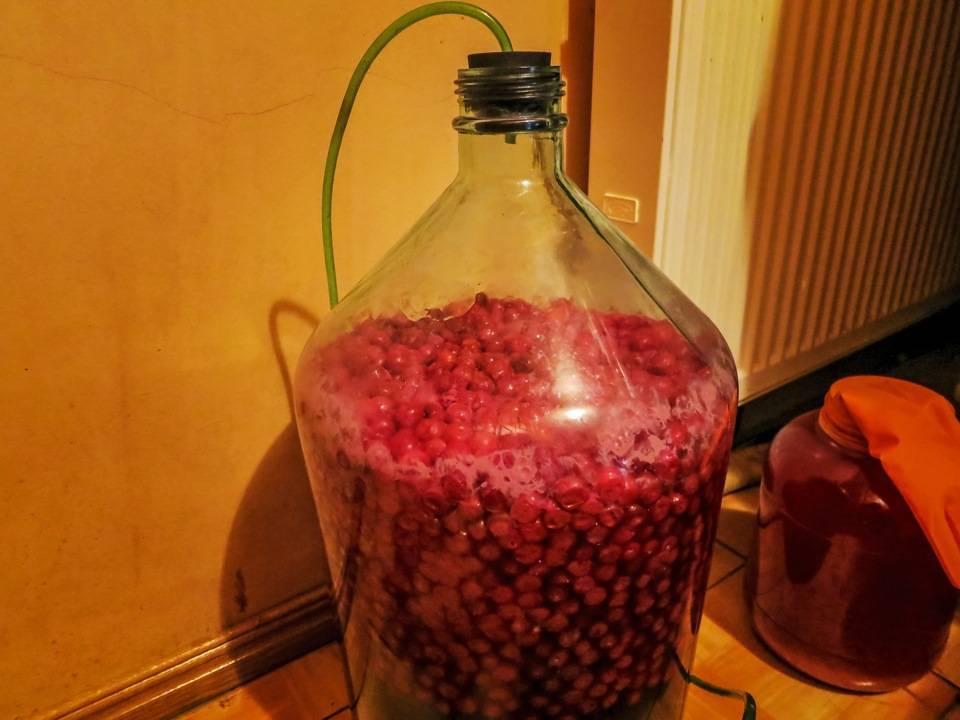 Домашнее вино из изюма: как правильно и вкусно приготовить