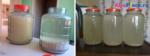 Осветление браги: 9 способов в домашних условиях
