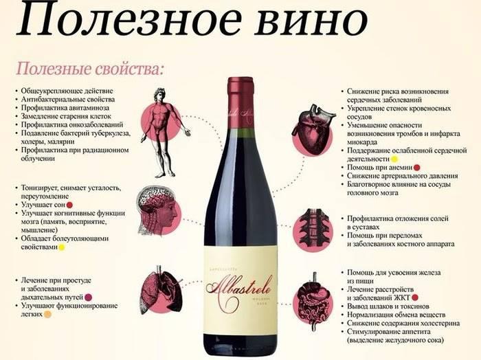 Польза алкоголя в малых дозах для организма и возможный вред