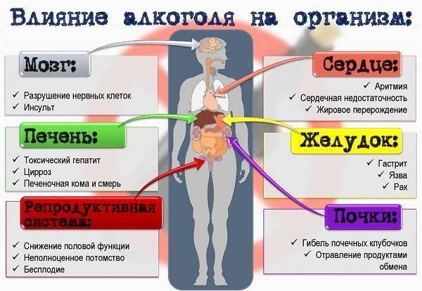 Когда можно пить алкоголь после удаления аппендицита - мнение врачей