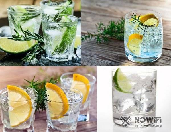 С чем пить джин? - правила пития