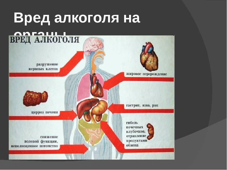 » каков конкретно вред курения и алкоголя на организм человека каков конкретно вред курения и алкоголя на организм человека — бросаем курить и пить