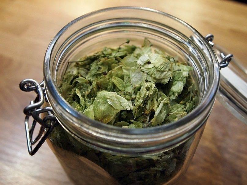 Домашнее пиво из солодового экстракта пивного сусла – инструкция для начинающих