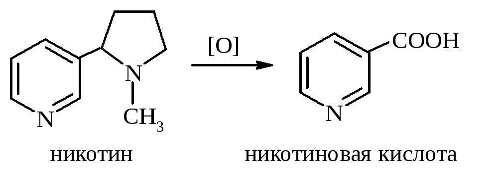 Никотиновая кислота: польза и вред для здоровья и красоты