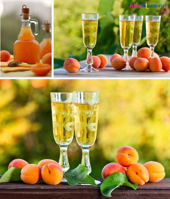Рецепт приготовления абрикосового вина