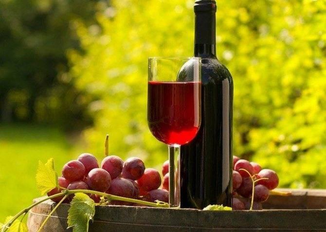 ✅ виноград лидия вино в домашних условиях. рецепты вина из винограда лидия в домашних условиях - живой-сад.рф