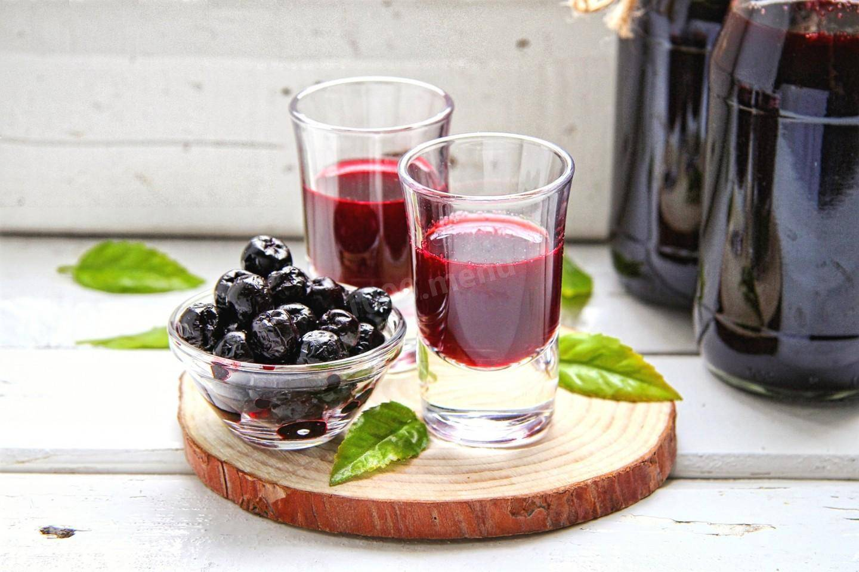 Вино из черноплодной рябины с дрожжами в домашних условиях: этапы приготовления и ингридиенты