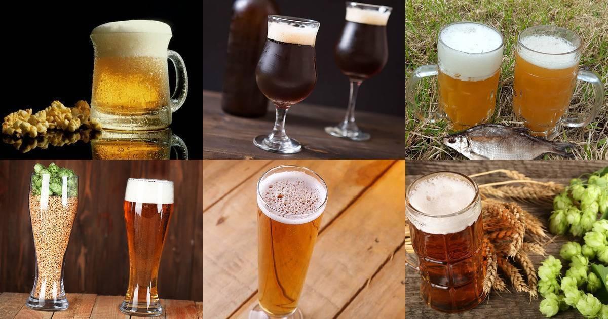 3 сорта пива, которые проще всего сварить дома