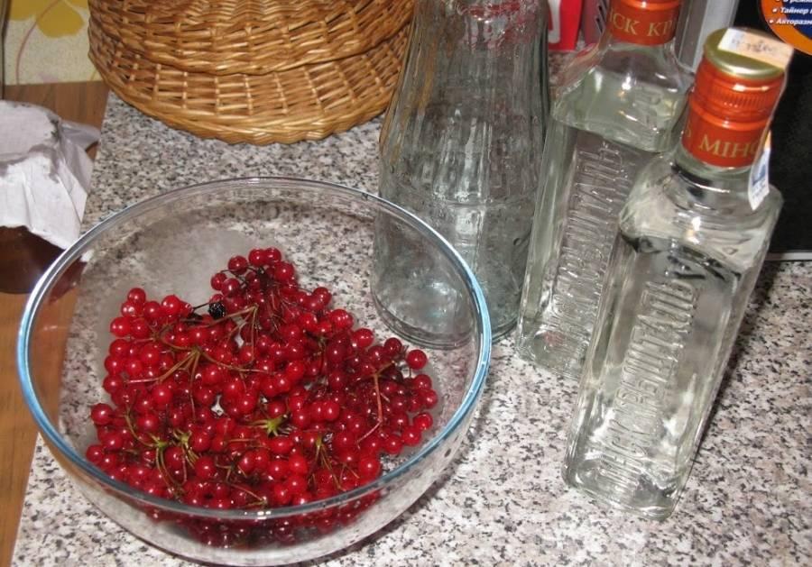 Черносмородиновая наливка – кулинарный рецепт