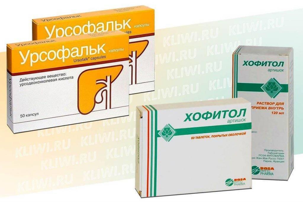 «Урсосан» или «Хофитол» — отличия препаратов и что лучше