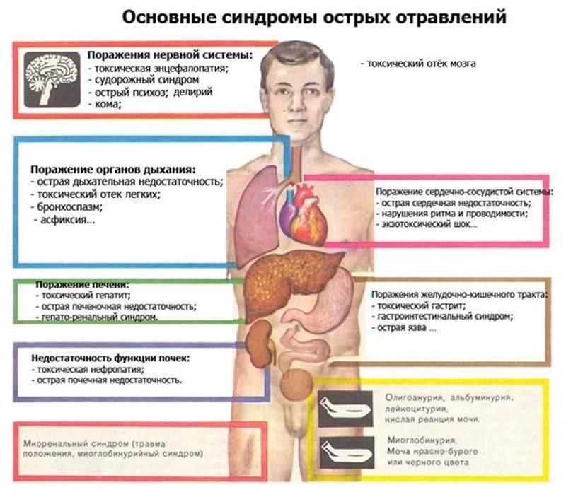 Симптомы отравления метиловым спиртом, первая помощь и лечение