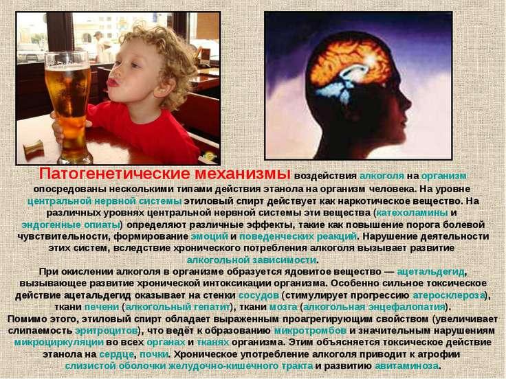 Как алкоголь влияет на иммунитет человека?